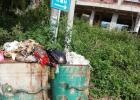 蕉乡路这个垃圾堆放点没能及时清理,臭气熏天