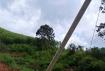 危险!张黄镇元坝至山冲路段一缆线杆倾斜摇摇欲坠,望及时抢修