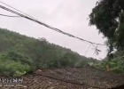 张黄阳春村委中古塘村广电的光缆掉下来阻障一对老人出入