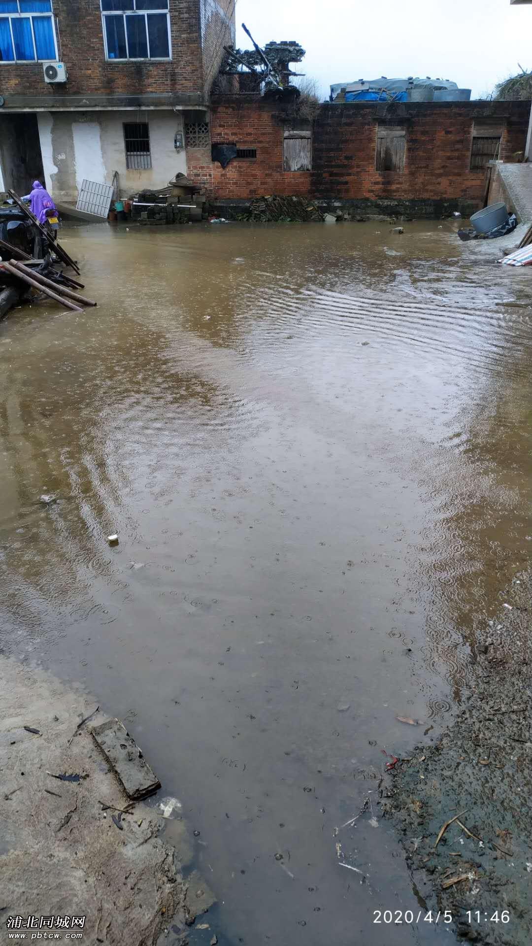 雨水倒灌回生活区