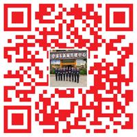 浦东新城二维码2019.png